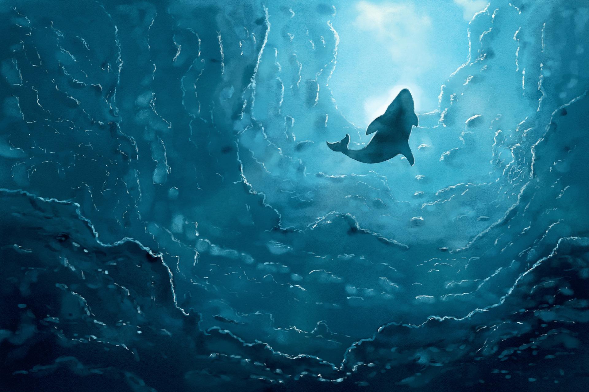 Chant des baleines 4e Tous artistes